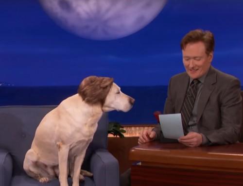 Gosling Gate bei Conan O'Brien